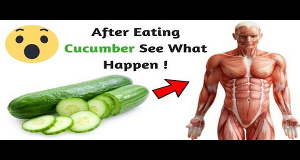 13 AmazingThings That Can Happen to Your Body If You Start Eating One Cucumber a Day