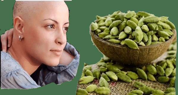 foods prevent cancer