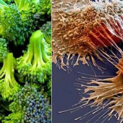 Cancer Dies When You Eat These 26 foods