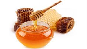 honey antibiotics