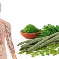 Healthy Reasons You Should Be Eating Moringa Leaves